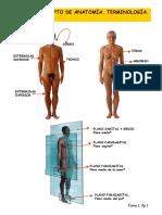 Tema 1 (Imagenes) Concepto de Anatomia. Terminologia. Planos y Ejes.