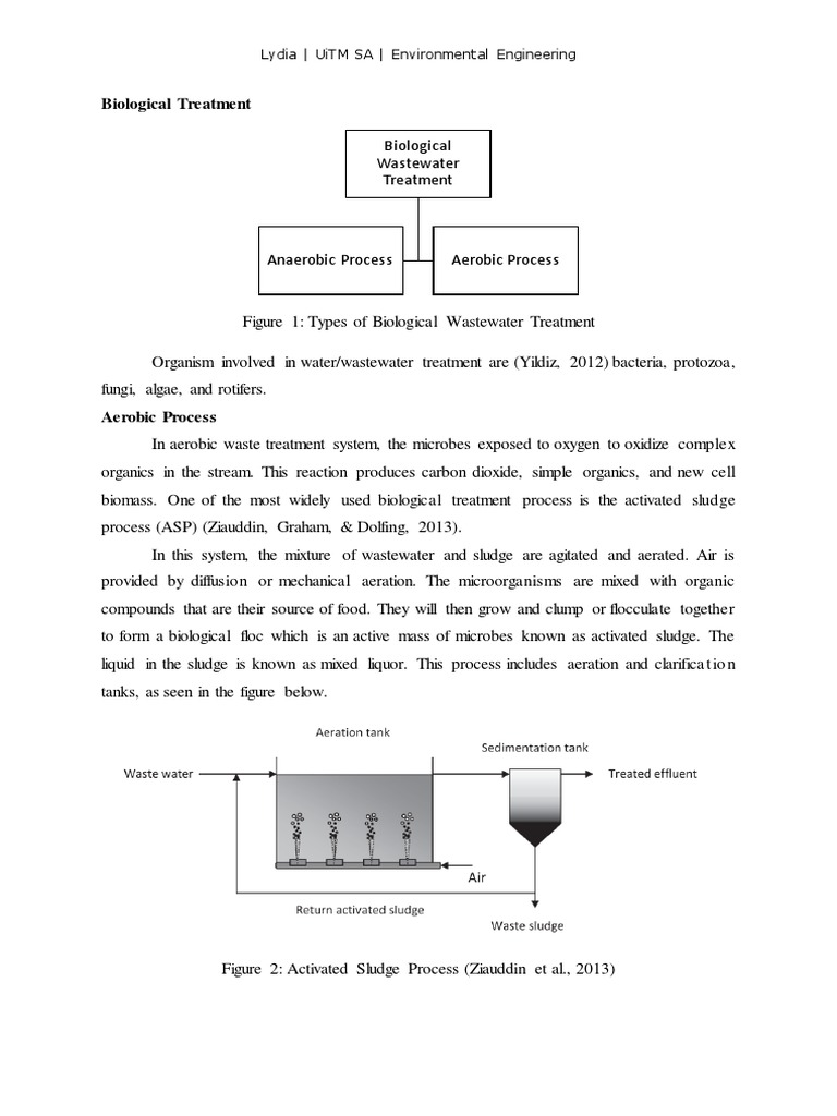 Biological Treatment   Sewage Treatment   Water Pollution
