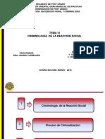 UGMA TEMA 6 Criminologia de La Reaccion Social 2019