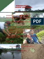 Refores Ribera Bambu RAD 2018