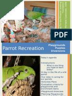 Parrot Recreation