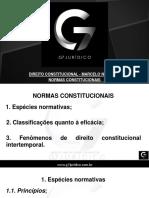 Slides 06 - Normas Constitucionais