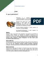 TÓPICOSPARACONTABILIDADEBÁSICA.pdf
