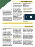 Transcript_EA_013.pdf