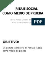 El Peritaje Social Como Medio de Prueba