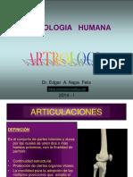 0-2 ARTROLOGIA 2014 (1)