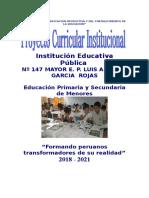 PCI 2018-2021.doc