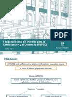 FONDO MEXICANO DEL PETROLEO.pdf