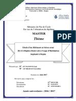 (R+11+Duplex+ entre sol) à usage d'habitation implanté à Bejaia.pdf