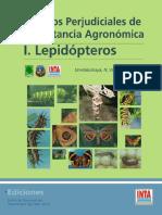 Lepidopteros