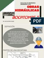 Bocatomas i (Oh-ucv 2017)