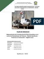 Palosantuyoc - PDN