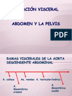 Irrigación Visceral Del Abdomen y La Pelvis 2016