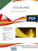 Pigmentos biliares.pdf