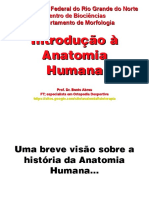 Introdução anatomia4 kn.ppt