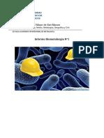 Informe 1 Biometalurgia