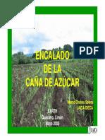 PP-Encalado de La Caña de Azúcar-2005
