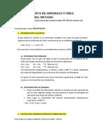 Planta-de-Amoniaco-y-Urea-Grupo.docx