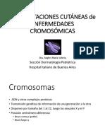 cromosomica