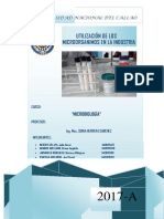4 Informe Utilización de Los Microorganismos en La Industria
