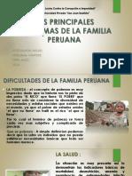 Principales Problemas de Las Familias Peruanas