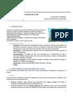 TEMA 1. Estructura y Función de La Piel.