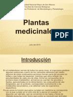 Plantasmedicinales Grupo5 100714175036 Phpapp02