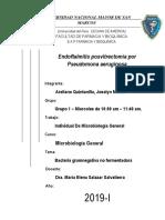 Trabajo Individual de Microbiología General Caso Clínico.