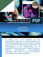 Panel  Chikungiunya.pdf