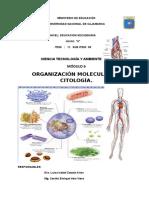 Mod. 6B Orgna.mol y Citolog