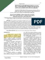 Alterações Morfológicas Em Brânquias de Oreochromis