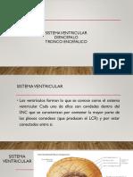 Sistema Ventricular Diencéfalo Tronco Encefálico(1)