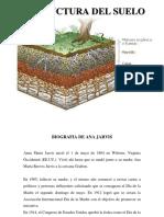 ana jarvis y estructura del suelo