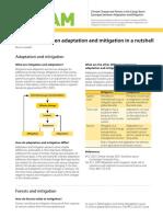 ENGLISH-Definitions&ConceptualFramework.pdf