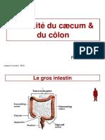 10 Cours Ceacum Colon 2010