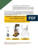 Production of Small Interfering RNA Using E.coli in MINIFOR Fermenter