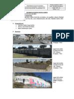 Ucsp Informe de Inspeccion en Campo 2019 i
