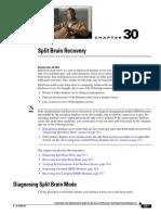 split_brain_recovery.pdf