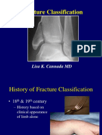 G06 -Fracture Classification