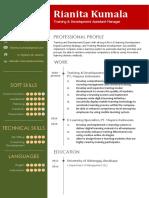 CV Template 6.docx