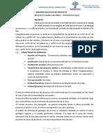 Resumen Ejecutivo Del Proyecto PDF