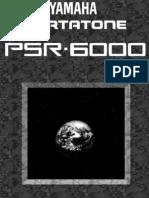 PSR6000E