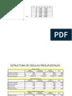 Estructura de cédulas presupuestales.xlsx