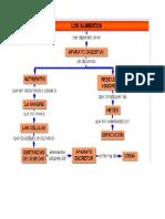 Mapa Conceptual de Los Alimentos
