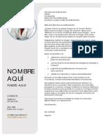 CV model
