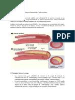 Enfermedades Vaculares Coronales