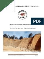 informe-de-inpacto-ambiental-de-la-cantera-el-gavilan-rubrica.docx