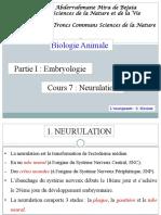 Cours 07.......Neurulation