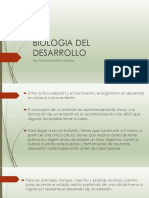 Presentación desarrollo.pptx