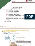 TEMA 4 Aminoácidos y Proteínas Farma Emma 2018-2019